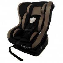 Sweet Heart Paris - Car Seat CS363 GD